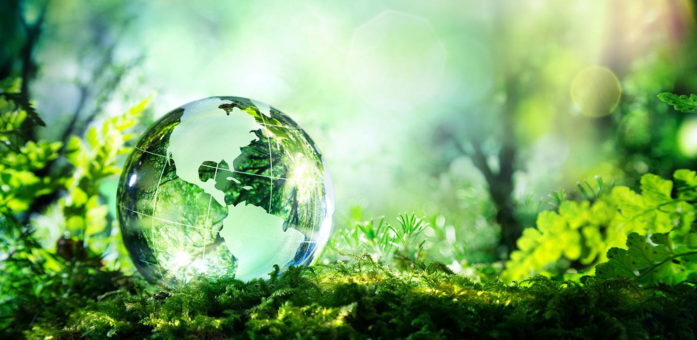 Hållbart företagande
